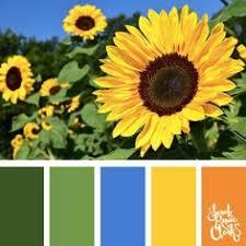 Yellow Color Combinations Color Palette 2907 Color Palette Ideas Color Shades Glass