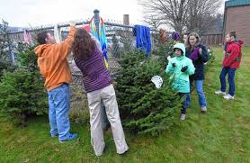 secret santa gives trees to mohawk families