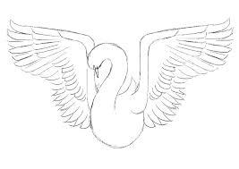 photoshop tutorial create a beautiful bird illustration digital