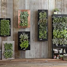 chalkboard wall planter williams sonoma