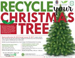 be a holidayhero recycle your christmas tree bowie md patch