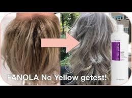 johnbeerens hairstyler de fanola no yellow shoo en haarmasker getest zilvershoo