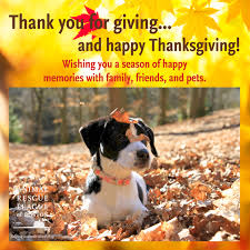 thanksgiving wishes from the arl animal rescue league of boston