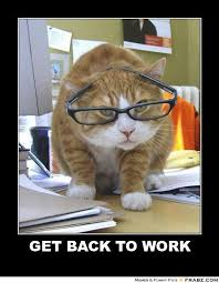 Get Back To Work Meme - get back to work lolcat meme generator posterizer lolcats get