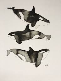orca whale illustration giclee print by victoriadraws