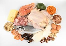 alimentazione ricca di proteine cibi proteici quali sono i 10 alimenti pi禮 ricchi di proteine