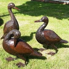 dyliss daedra and doris indian runner ducks