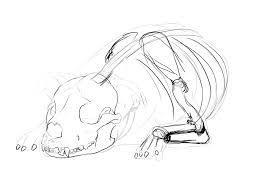 Dog Anatomy Book Anatamation Where Anatomy Meets Animation Dog Anatomy 2