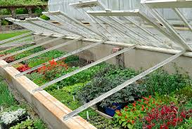 Backyard Greenhouse Winter Cold Frame Extend Your Vegetable Garden Season Harvest To Table