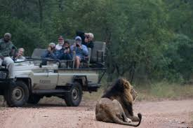 african safari car south african safari with kapama private game reserve u2014 aspiring