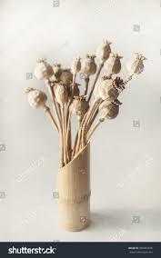 Poppy Home Decor by Dried Poppy Bamboo Vase Home Interior Stock Photo 366903740