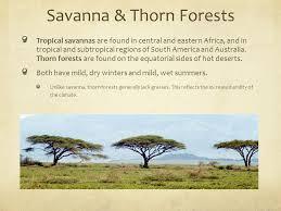 Tropical Savanna Dominant Plants - unit 4 biomes u0026 communities ppt video online download