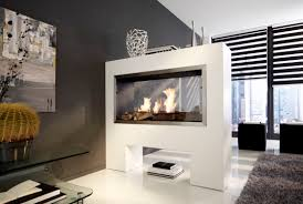 double sided propane fireplace home design new marvelous