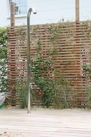 pflanzen als sichtschutz fã r balkon die besten 25 sichtschutz pflanzen ideen auf balkon