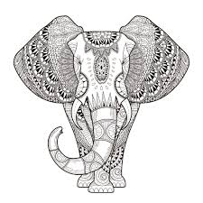 animal coloring pages for adults chameleon coloringstar