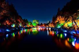 tsb bank festival of lights new plymouth eventfinda