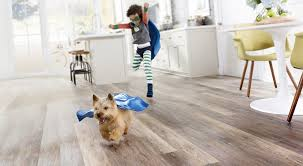 laminate flooring and pets accidents
