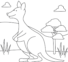 kangaroo coloring pages to print u2014 allmadecine weddings kangaroo