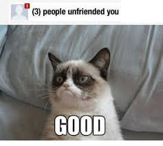 Angry Cat Good Meme - 3 people unfriended you good grumpy cat meme on me me