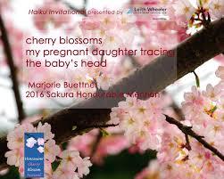 cherry blossom fest officialvcbf twitter