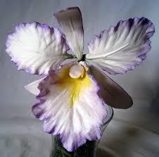 edible delights img 0091 by j edible delights via flickr gumpaste flowers