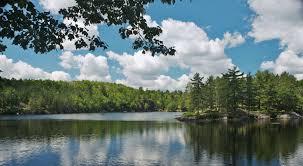Michigan Nature Activities images Echo lake nature preserve 0