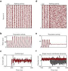 recovery of dynamics and function in spiking neural networks with