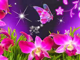 attractive animated butterfly