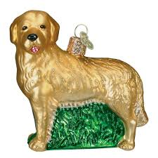 amazon com old world christmas golden retriever glass blown