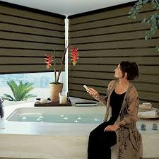 Battery Operated Window Blinds The Most Bedroom 67 Best Battery Operated Roller Blinds Images On