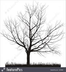 cherry tree in winter illustration