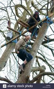 lng pipeline protesters building a tree platform on the penpont