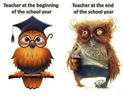 Art School Owl Meme - 20 end of the school year memes that only teachers will understand