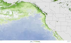 Noaa Maps Record Setting Bloom Of Toxic Algae In North Pacific Noaa