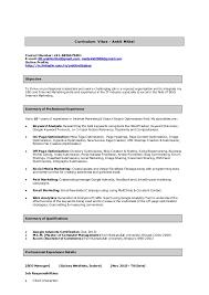 Team Lead Sample Resume by Ankit Mittal Team Lead Seo Sample Resume