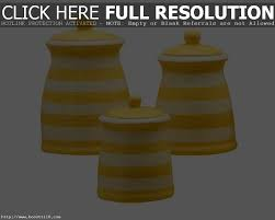 Large Kitchen Canisters Accessories Marvelous Sahara Marble Kitchen Canister Yellow