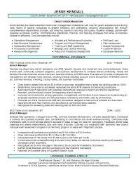 Ses Resume Examples by Branch Manager Resume Examples Best Resume For You