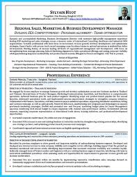 Best Business Resume Font by Nice Marvelous Things To Write Best Business Development Manager
