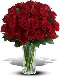 2 dozen roses and devotion 2 dozen stemmed roses dade city fl