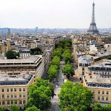 Indiana is it safe to travel to paris images 52 best the street and the rows of trees images jpg