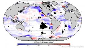 of data on world u0027s oceans reveal a troubling oxygen decline