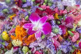 flowers las vegas edible flowers spruce up springtime menus in las vegas las vegas