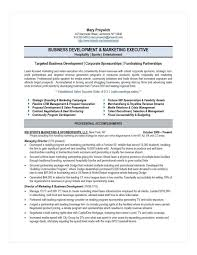 Business Development Resumes Executive Resume Samples