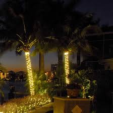 precious outdoors also lighted palm trees along with tree string