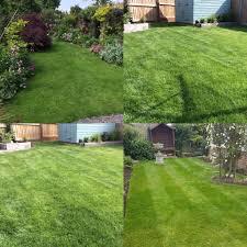 lawn treatment service greengrass ltd