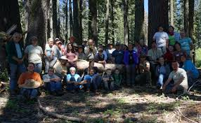 plumas national forest home
