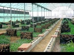 chambre agriculture 41 chambre agriculture 41 élégant les agriculteurs s emparent des