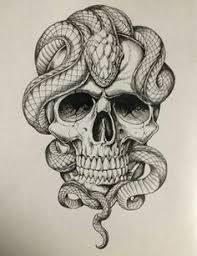 snake skull sketch tattoo snake tattoo sketches pinterest