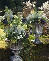 winterharte pflanzen balkon winterliche gestaltungsideen mit pflanzen