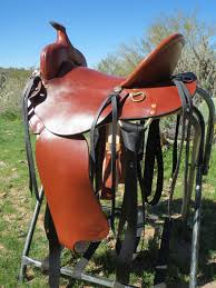 Horse Saddle by What U0027s The Difference Between A Mule Saddle And A Horse Saddle